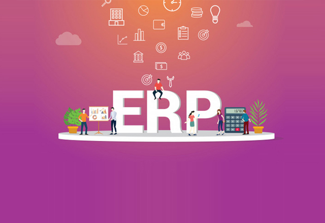Customized ERP Software